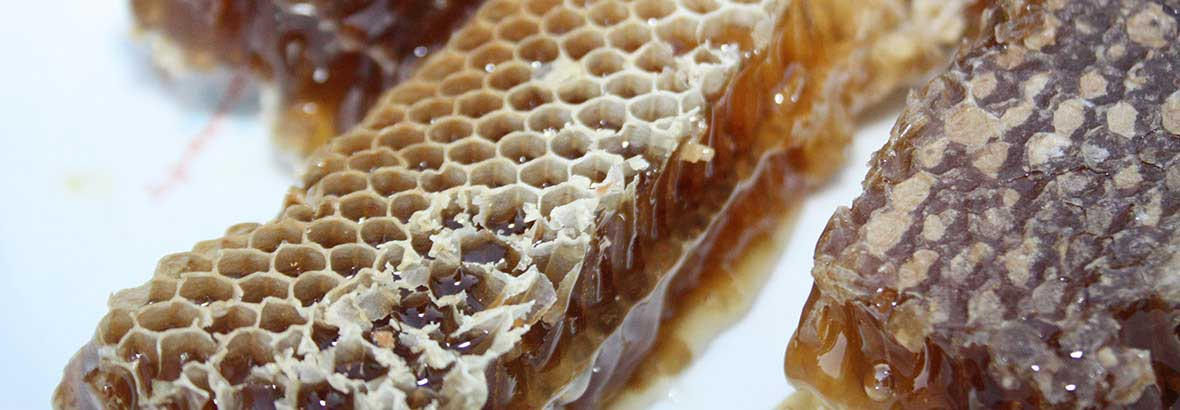 Packaged directly from the honeycomb